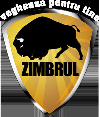 Zimbrul Security Logo